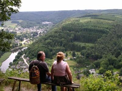 2009 - Mouzaive - Eté - Point de vue de Naglémont (JM Verday - Ardenne namuroise) (10).JPG